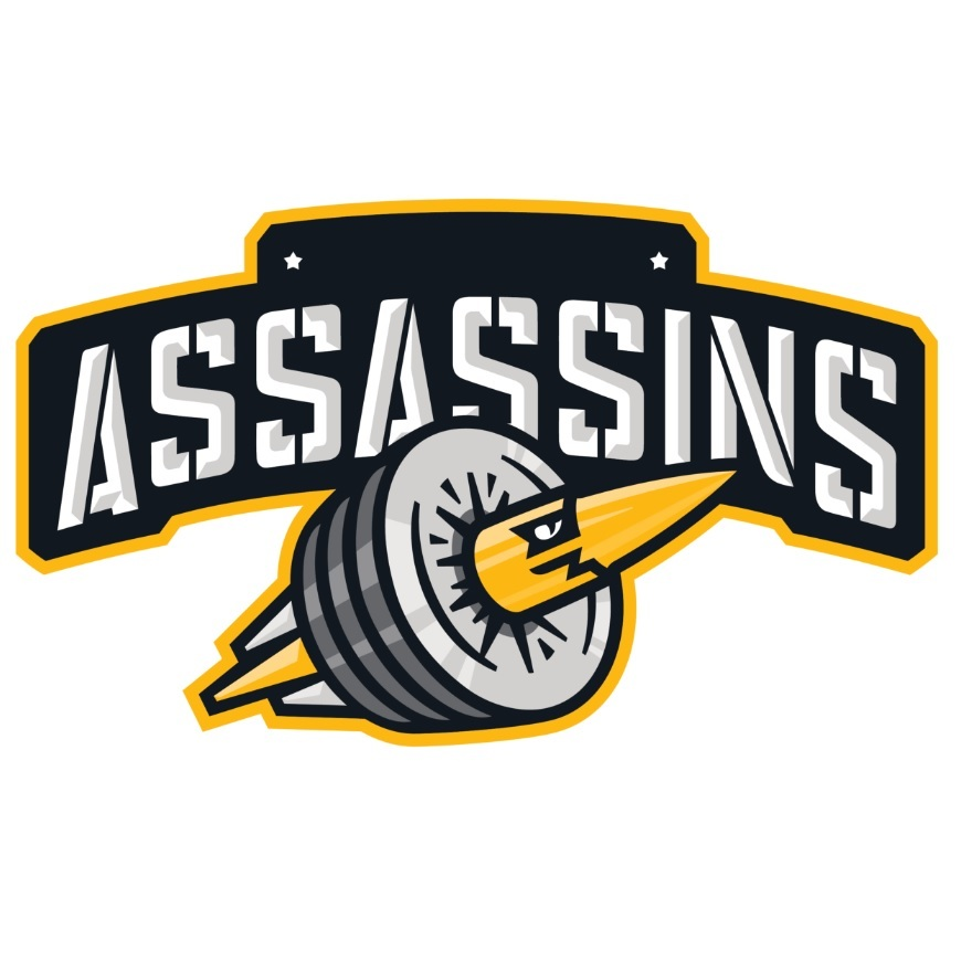 Division I: Assassins - New York Softball Cricket League
